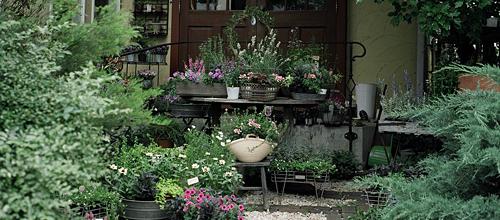 Prome Garden